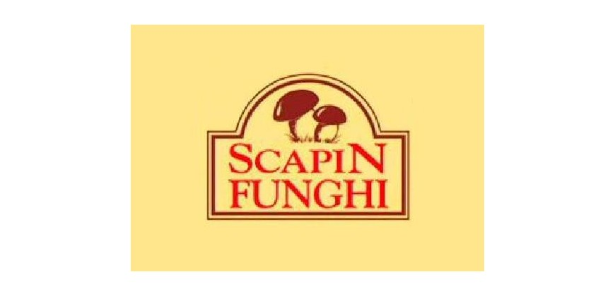 Online the new website scapinfunghi.it
